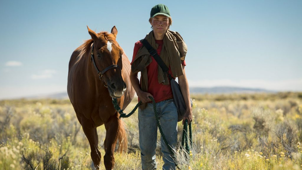 lean on pete venezia 74 2
