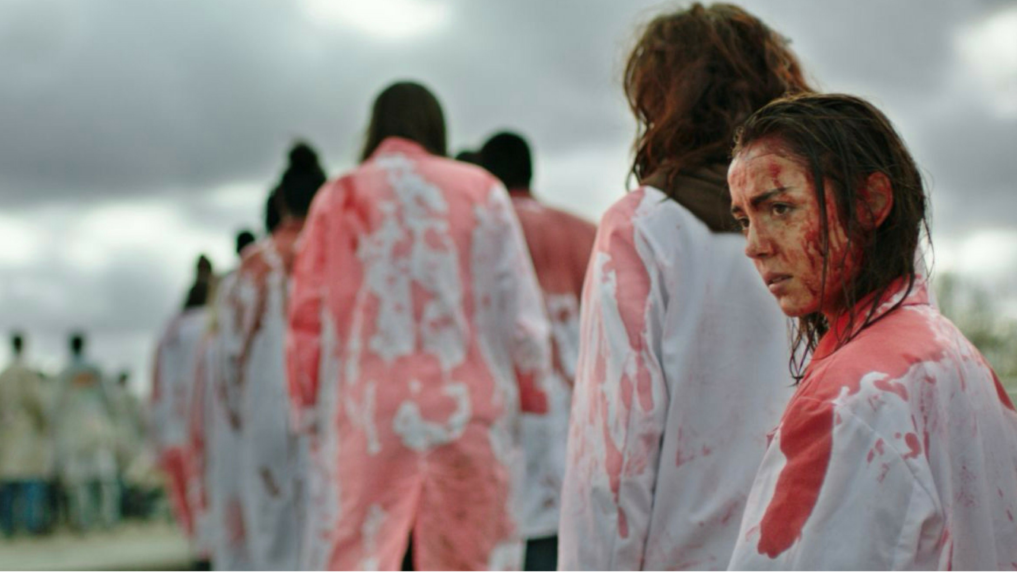 Raw/Grave, cannibal movie d'autore