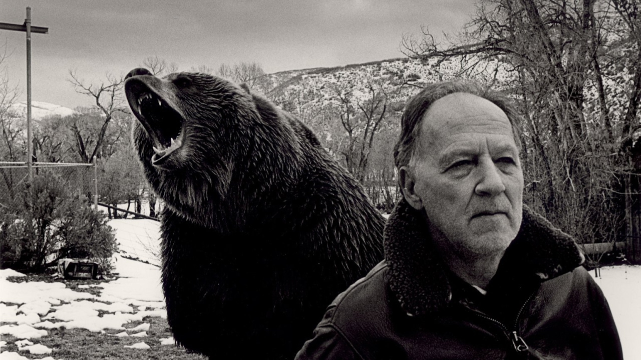 Grizzly Man: di Herzog, solitudine e orsi
