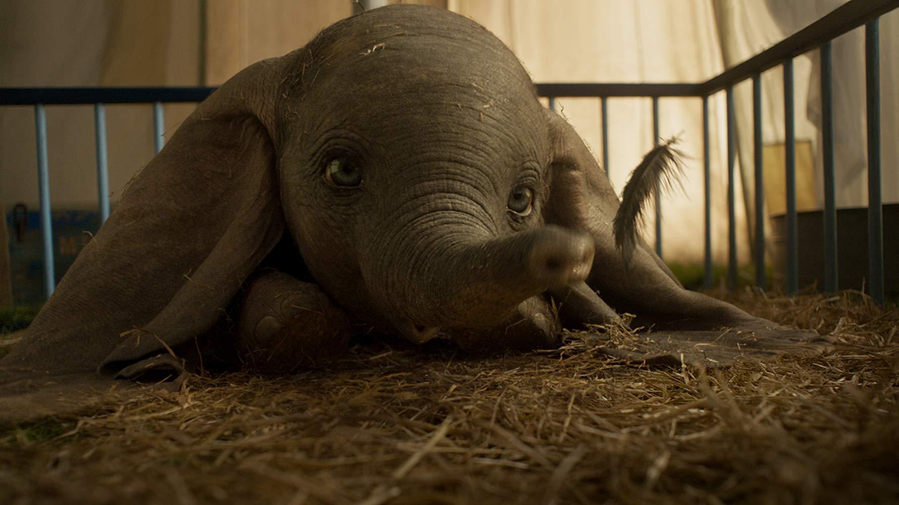 Dumbo non è un film di Tim Burton